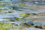 Ice / Grass