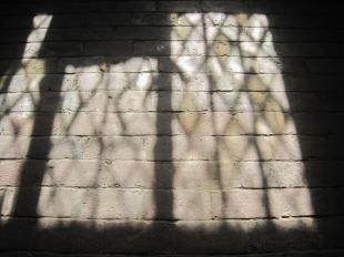 window : floor