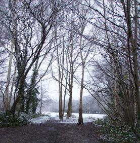 Snowlight