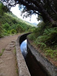 Following the Levada