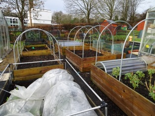 Other peoples nice allotments