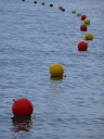 Swimming buoys