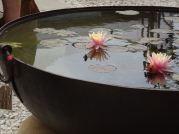 Pond-bowl