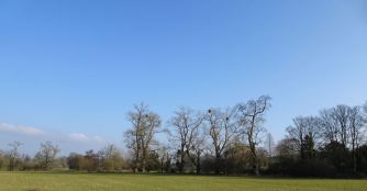 Blue skies (at last)