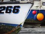 266 & buoys