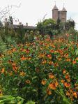 Sissinghurst Oranges